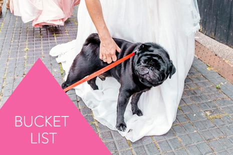 fun-wedding-photographer-kent001-5